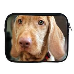 Vizsla second Apple iPad 2/3/4 Zipper Cases