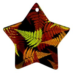 3d Red Abstract Fern Leaf Pattern Star Ornament (two Sides)