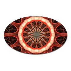 Circle Pattern Oval Magnet