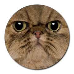 Cute Persian Cat face In Closeup Round Mousepads