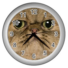 Cute Persian Cat Face In Closeup Wall Clocks (silver)