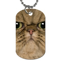 Cute Persian Cat face In Closeup Dog Tag (One Side)