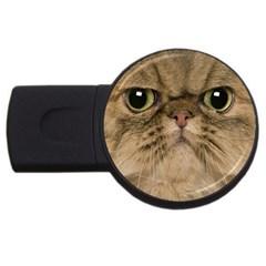 Cute Persian Cat face In Closeup USB Flash Drive Round (1 GB)