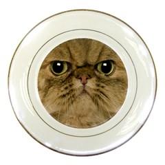 Cute Persian Cat face In Closeup Porcelain Plates