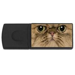 Cute Persian Cat Face In Closeup Usb Flash Drive Rectangular (4 Gb)
