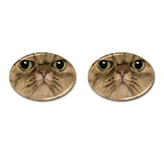 Cute Persian Cat Face In Closeup Cufflinks (oval)