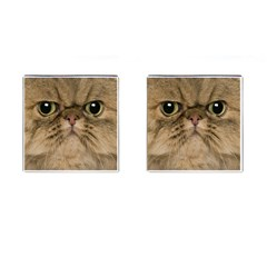 Cute Persian Cat Face In Closeup Cufflinks (square)