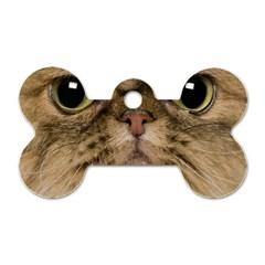 Cute Persian Cat Face In Closeup Dog Tag Bone (one Side)