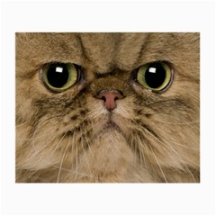 Cute Persian Cat Face In Closeup Small Glasses Cloth (2 Side)