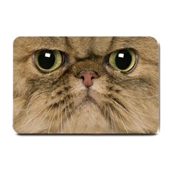 Cute Persian Cat Face In Closeup Small Doormat