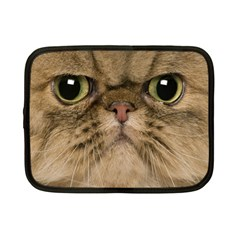 Cute Persian Cat face In Closeup Netbook Case (Small)
