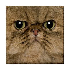 Cute Persian Cat Face In Closeup Face Towel