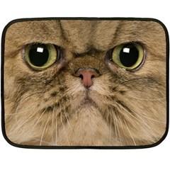 Cute Persian Cat Face In Closeup Fleece Blanket (mini)
