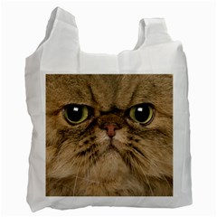 Cute Persian Cat Face In Closeup Recycle Bag (two Side)