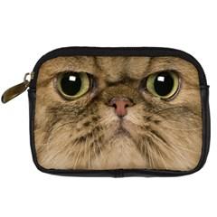 Cute Persian Cat Face In Closeup Digital Camera Cases
