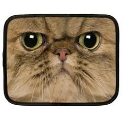 Cute Persian Cat face In Closeup Netbook Case (XL)