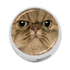 Cute Persian Cat face In Closeup 4-Port USB Hub (One Side)