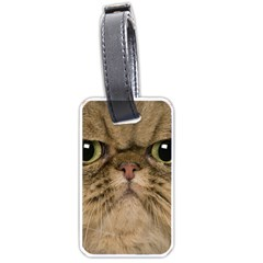 Cute Persian Cat face In Closeup Luggage Tags (One Side)