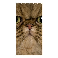 Cute Persian Cat face In Closeup Shower Curtain 36  x 72  (Stall)