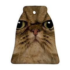 Cute Persian Cat Face In Closeup Ornament (bell)