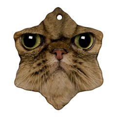 Cute Persian Cat Face In Closeup Snowflake Ornament (two Sides)
