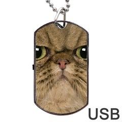 Cute Persian Cat Face In Closeup Dog Tag Usb Flash (one Side)