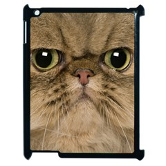 Cute Persian Cat Face In Closeup Apple Ipad 2 Case (black)