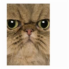 Cute Persian Cat Face In Closeup Small Garden Flag (two Sides)