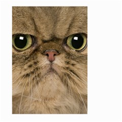 Cute Persian Cat face In Closeup Large Garden Flag (Two Sides)