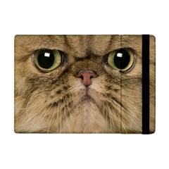 Cute Persian Cat Face In Closeup Apple Ipad Mini Flip Case