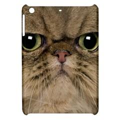 Cute Persian Cat Face In Closeup Apple Ipad Mini Hardshell Case
