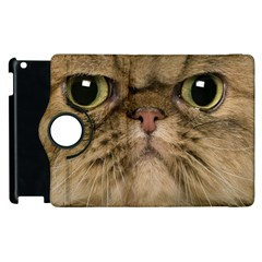 Cute Persian Cat Face In Closeup Apple Ipad 2 Flip 360 Case