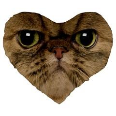 Cute Persian Cat Face In Closeup Large 19  Premium Heart Shape Cushions
