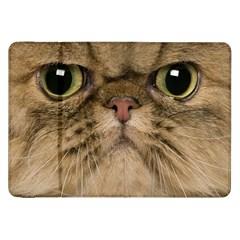Cute Persian Cat face In Closeup Samsung Galaxy Tab 8.9  P7300 Flip Case