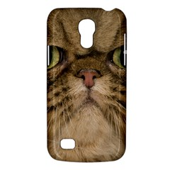 Cute Persian Cat face In Closeup Galaxy S4 Mini
