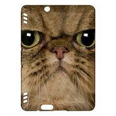 Cute Persian Cat face In Closeup Kindle Fire HDX Hardshell Case