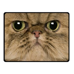 Cute Persian Cat Face In Closeup Double Sided Fleece Blanket (small)