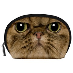 Cute Persian Cat Face In Closeup Accessory Pouches (large)