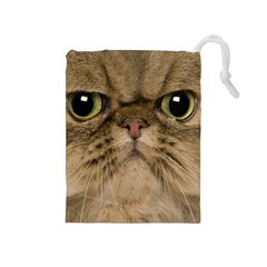 Cute Persian Cat Face In Closeup Drawstring Pouches (medium)