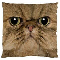Cute Persian Cat face In Closeup Large Flano Cushion Case (One Side)