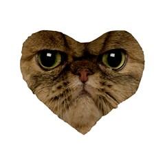 Cute Persian Cat Face In Closeup Standard 16  Premium Flano Heart Shape Cushions