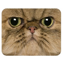 Cute Persian Cat Face In Closeup Double Sided Flano Blanket (medium)