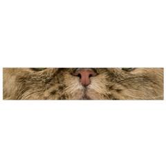 Cute Persian Cat Face In Closeup Flano Scarf (small)