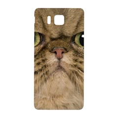 Cute Persian Cat Face In Closeup Samsung Galaxy Alpha Hardshell Back Case