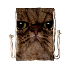 Cute Persian Cat Face In Closeup Drawstring Bag (small)