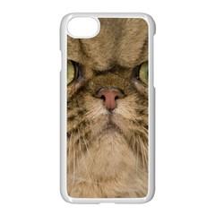 Cute Persian Cat Face In Closeup Apple Iphone 7 Seamless Case (white)