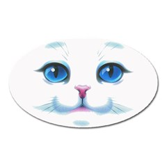 Cute White Cat Blue Eyes Face Oval Magnet