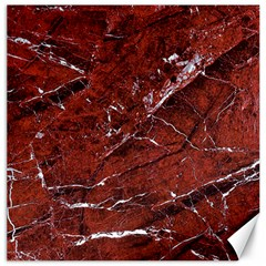 Texture Stone Red Canvas 20  x 20