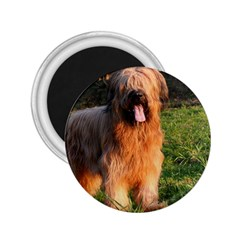 Full Briard 2.25  Magnets