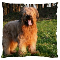 Full Briard Large Flano Cushion Case (Two Sides)